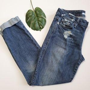 Joe's Jeans   Chelsea Cuff in Klum